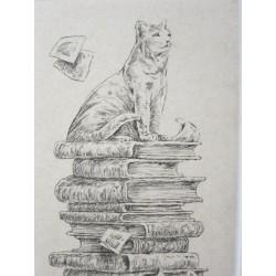 Chat bibliophile